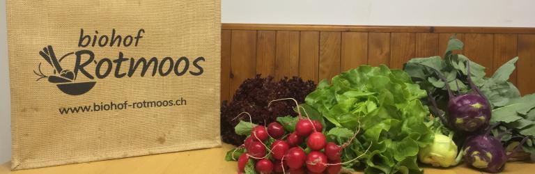 Panier de légumes Biohof Rotmoos
